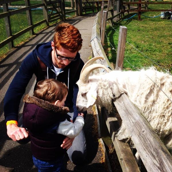 Day trip to Marsh farm 2015.