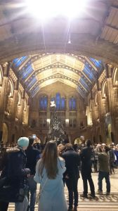 Greeted by Dippy the Diplodocus.