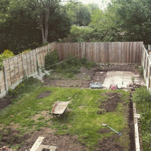 Before we started landscaping the garden.