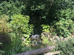 The waterfall in the sunken garden at Chester zoo.