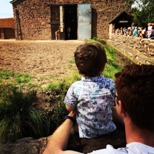 Oliver looking at the giraffes at Chester Zoo