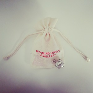 Blooming Lovely Jewellery - Pretty silver Bola necklace with silver chain.