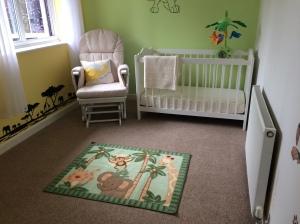 Elijah's finished nursery.