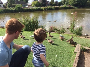 Daddy and Oliver feeding the ducks.