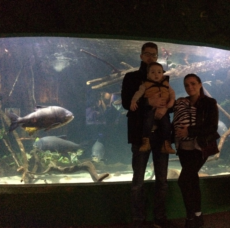 A day out at Blue Planet Aquarium