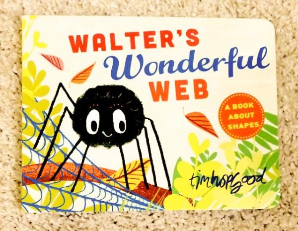 'Walter's Wonderful Web' by Tim Hopgood