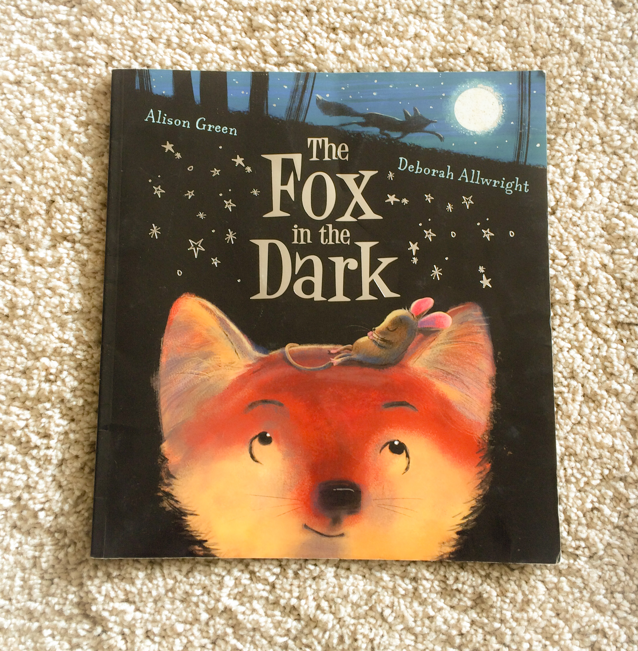 Children's book review - The Fox in the Dark by Alison Green and Deborah Allwright