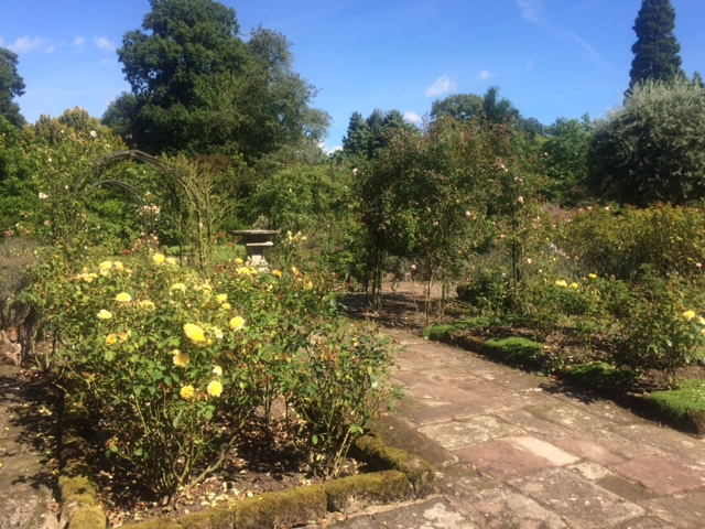 Cholmondeley Castle - Rose Garden