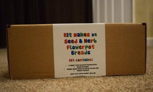 Wicked Uncle review - Flowerpot Bead Making kit